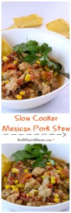 My easy Slow Cooker Mexican Pork Stew is an awesome weeknight meal. Loaded with protein and veggies, your family will love it!