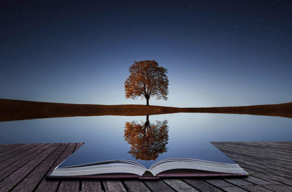 Career Coaching: Reflection