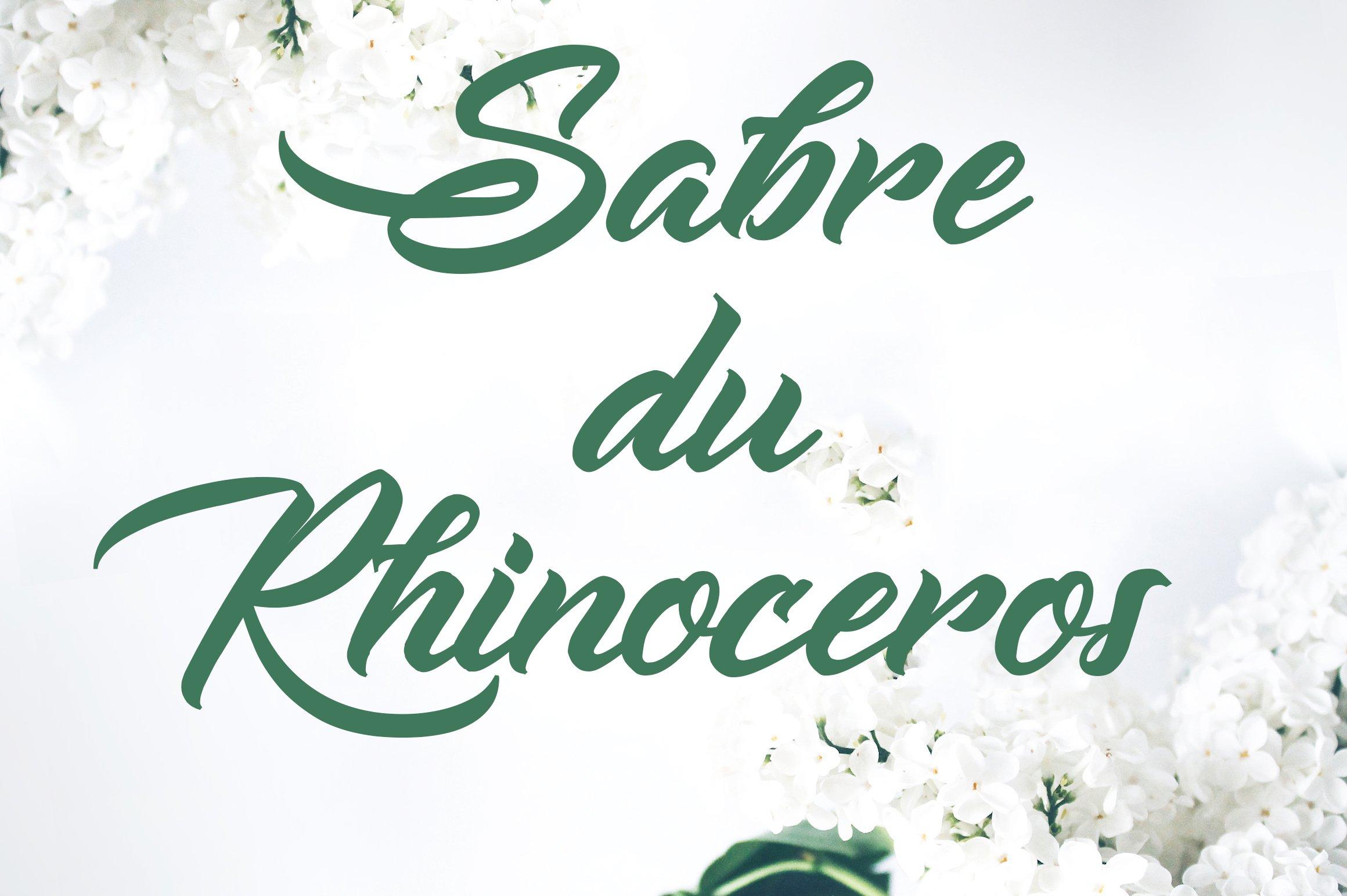 sabre-du-rhinoceros-font