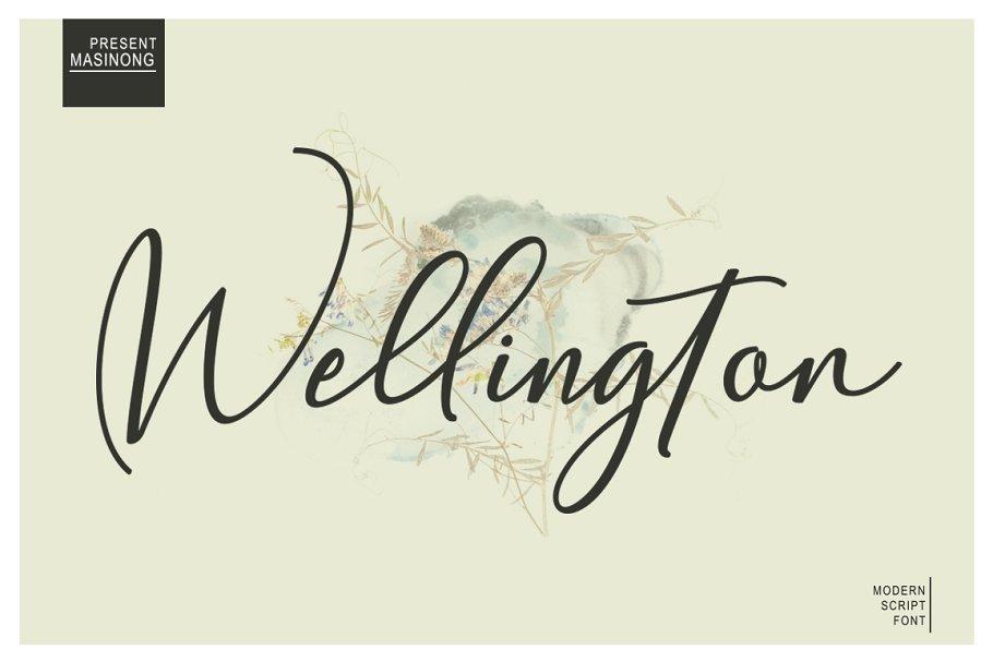 wellington-script-font