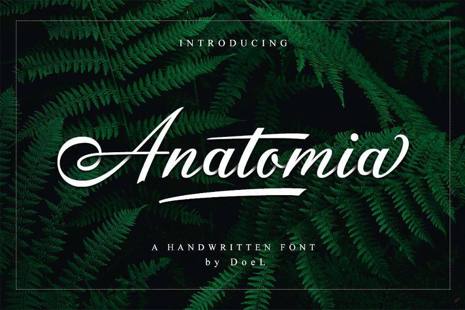 anatomia-script-font
