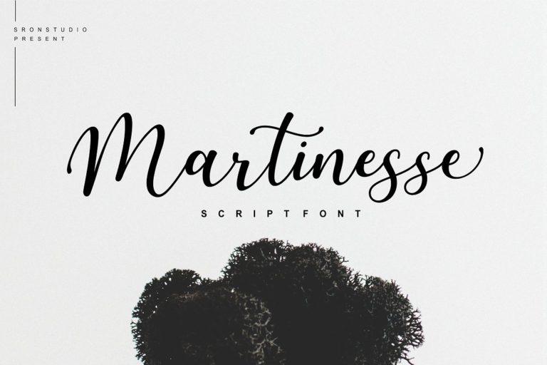 martinesse-script-font-768x512