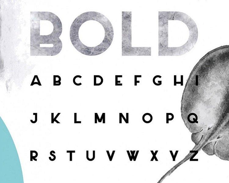 salt-typeface-1