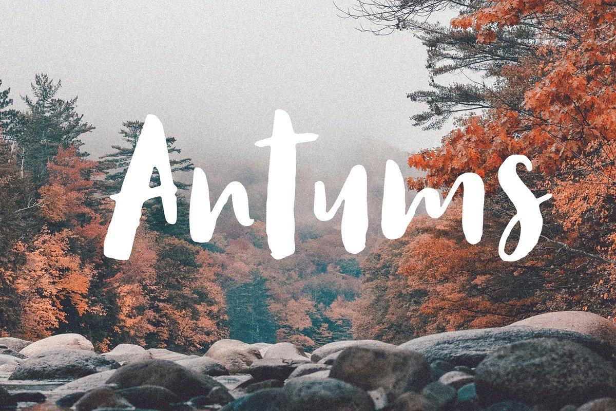 antums-script-font