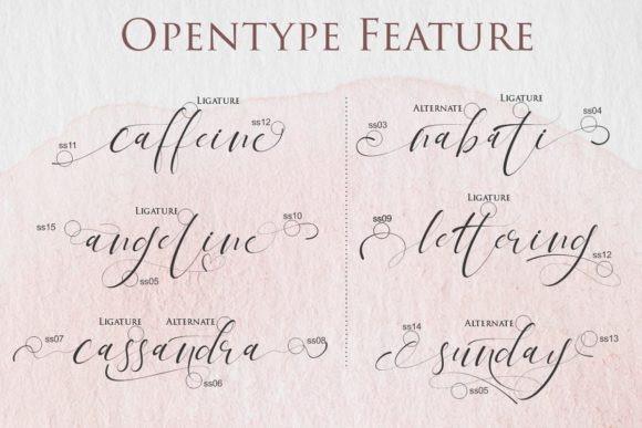 tagonda-calligraphy-font-4