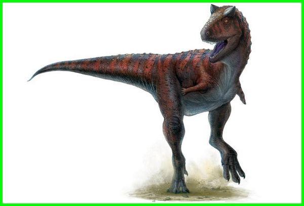 dinosaurus yang ganas, dinosaurus paling ganas di dunia, gambar dinosaurus ganas, dinosaurus yg ganas, dinosaurus yang lebih ganas dari trex, dinosaurus yg paling ganas, dinosaurus galak, dinosaurus banyak, dinosaurus terhebat