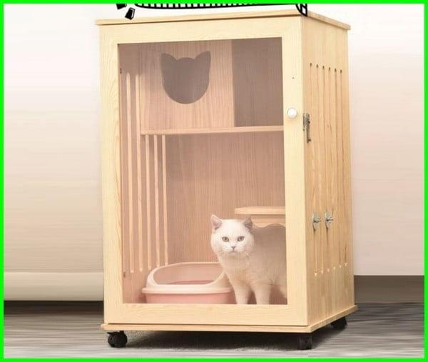 kandang kucing kayu sederhana, kandang kucing dari kayu sederhana, rumah kucing dari kayu sederhana, kandang kucing sederhana dari kayu, cara membuat rumah kucing dari kardus sederhana, cara membuat kandang kucing sederhana dari kardus, model kandang kucing sederhana, contoh kandang kucing sederhana, kandang kucing buatan sendiri sederhana, gambar rumah kucing sederhana, gambar kandang kucing sederhana