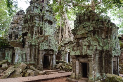 Ta Prohm, the infamous overgrown temple.
