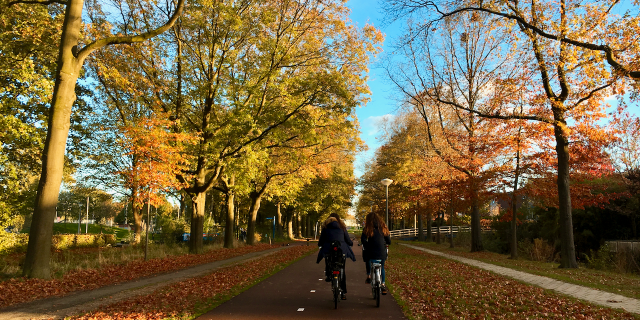 Herbst in Amsterdam