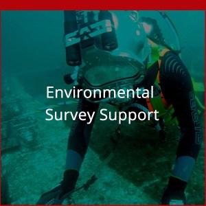 Dagger Diving Services