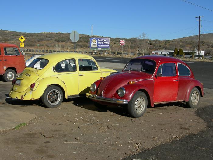 Old VW Bugs in Mayer, AZ