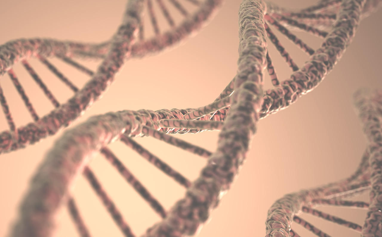 Het DNA van Smart Buildings