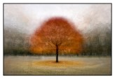 The maple tree at the east driveway to the Legislative Building at Queen's Park: an example of the photo impressionism technique in the round