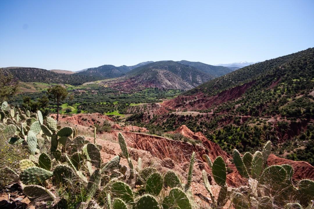 Paysage rouge et vert de l'Atlas, proche de Marrakech.