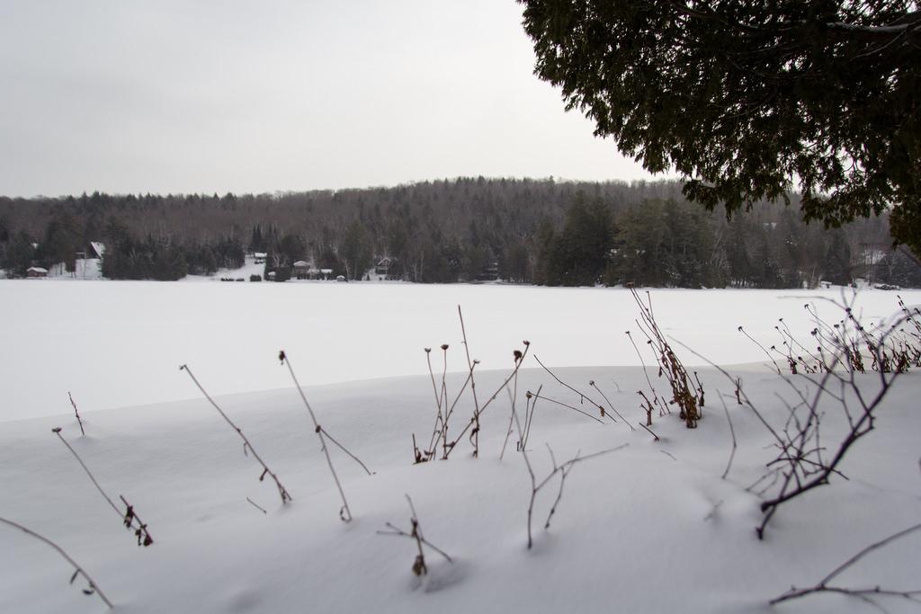 Vue sur le lac gelé et enneigé.