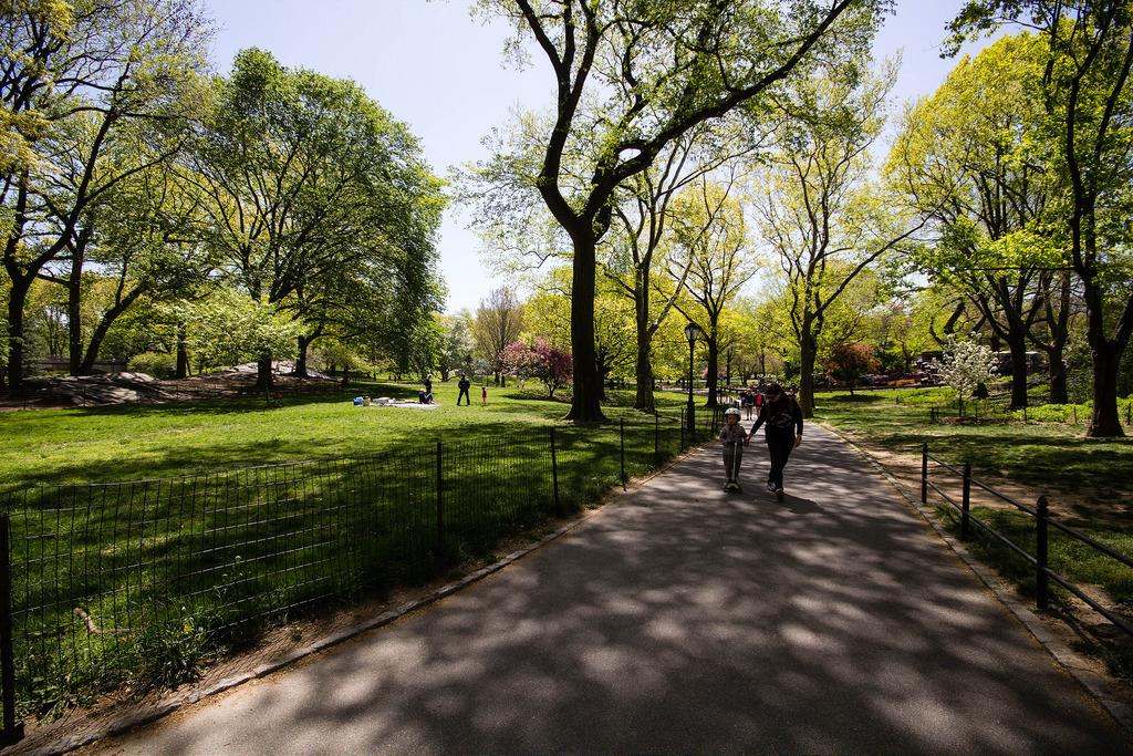 Promenade dans Central Park.