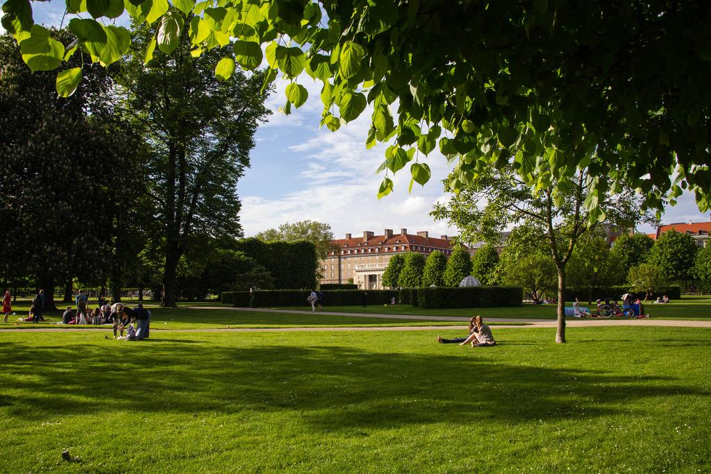 Repos tranquille dans un parc verdoyant.