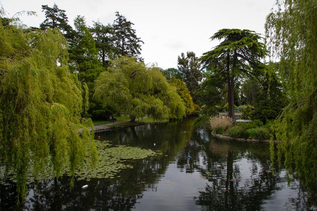 Parc et verdure à Victoria.