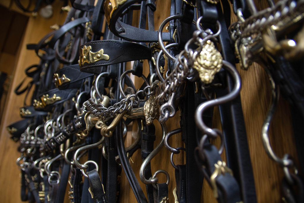Détail des brides des cavaliers de l'École d'Équitation Espagnole de Vienne.