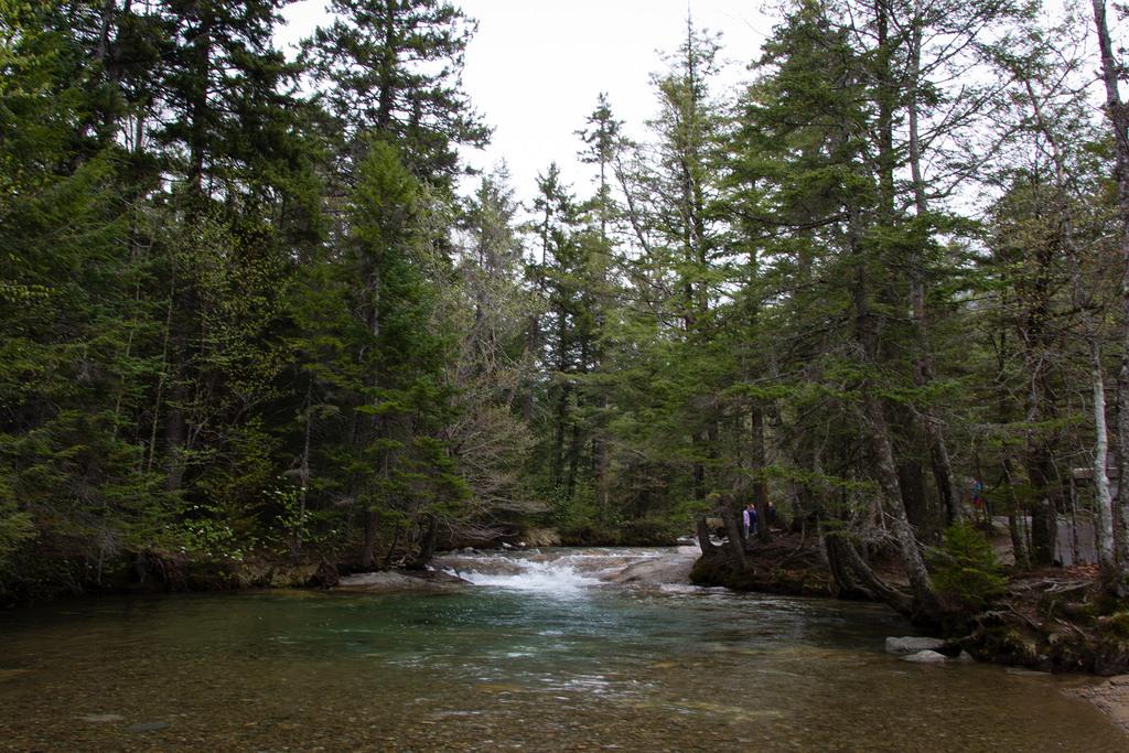Rivière dans les White Mountains.