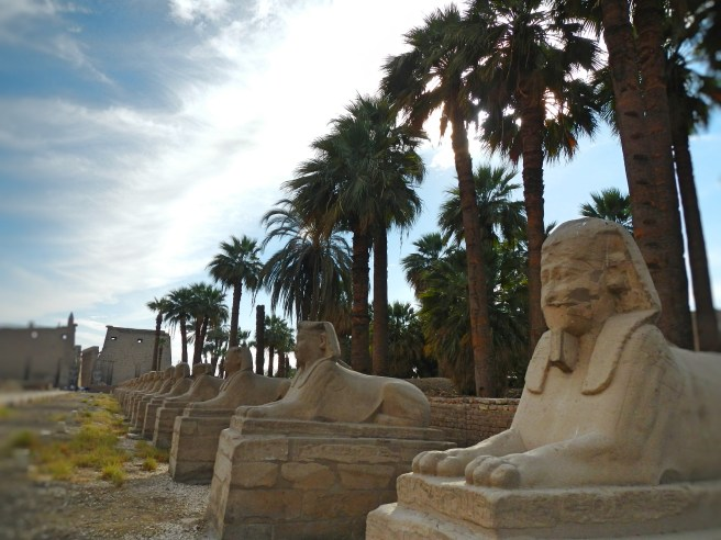 'Sphinx Alley' was though to contain over 1 thousand sphinx statues