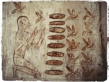 Motorcycle through Egypt, rtw trip, Egypt, wanderlust, adventure, luxor, abu simbel, horus, Cleopatra, valley of the kings, valley of the queens, cairo, giza, great pyramids, sphinx, dahshur, maidum pyramid, red pyramid, bent pyramid, ramses 1, ramses 2, ramses 3, djoser, dagsvstheworld, travel, travel guide eypt, abu simbel, aswan