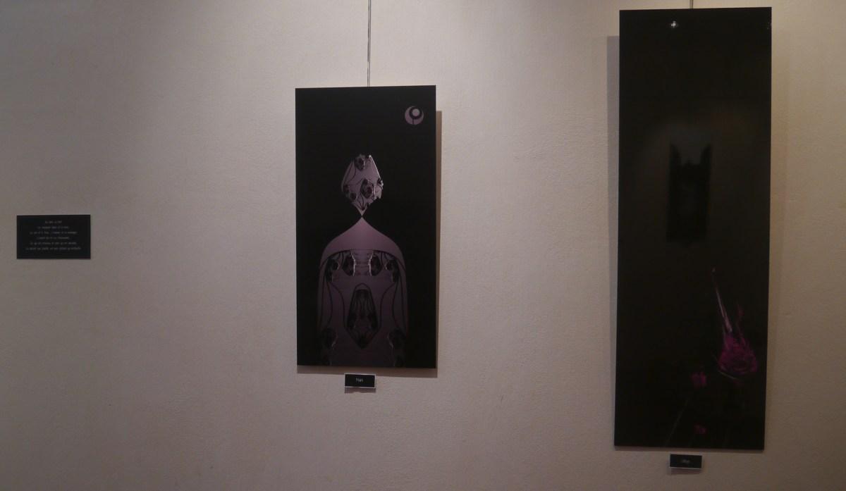 Compte rendu de l'exposition 3
