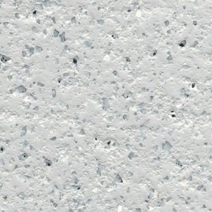 Seashell Silver