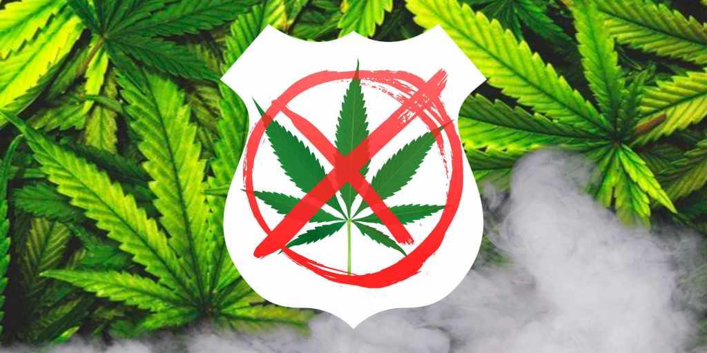 Law Enforcement Marijuana Usage