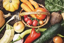 【資格取得】野菜コーディネーター養成!野菜ソムリエとどう違うの?