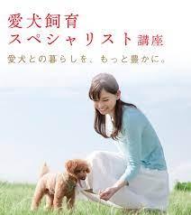 オンライン通信講座ユーキャンで「愛犬飼育スペシャリスト」資格を取得する
