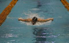 Men's swimming