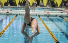 The University of Iowa mens' swimming fifth in Big Tens