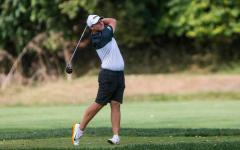A numerical approach to Hawkeye golf