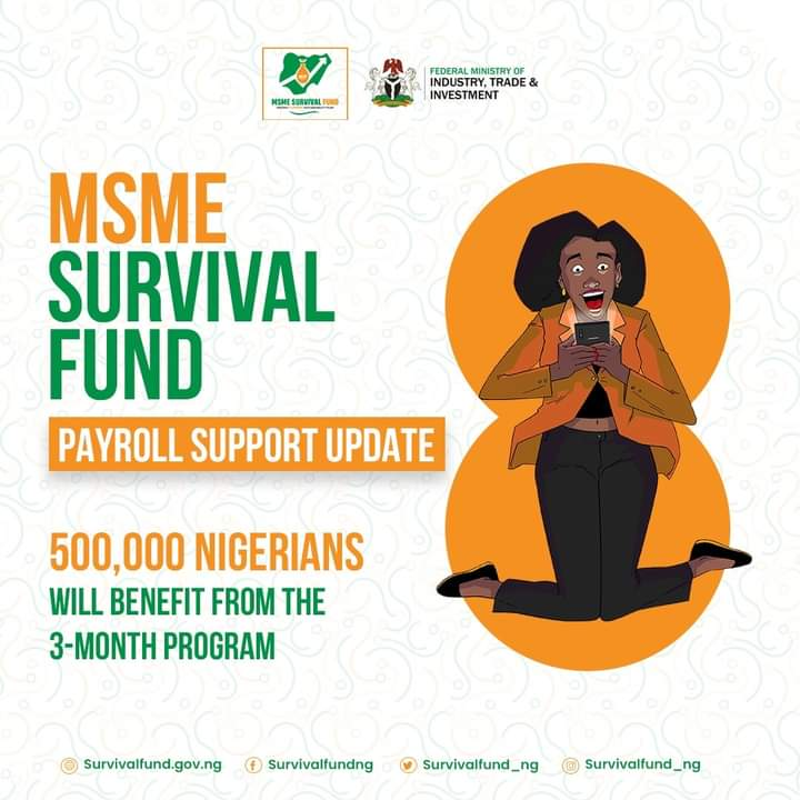 Federal Government of Nigeria Survival Fund Program for Small and Medium Enterprises