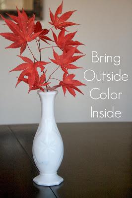 Bring Outside Color Inside 7