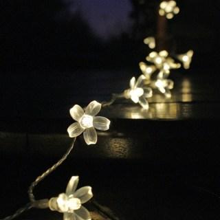 Decorative Lighting for your Garden 18