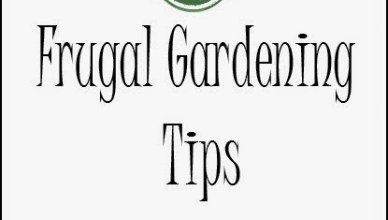 5 Frugal Gardening Tips 17