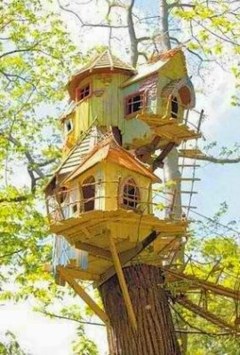 6 Insanely Awesome birdhouses
