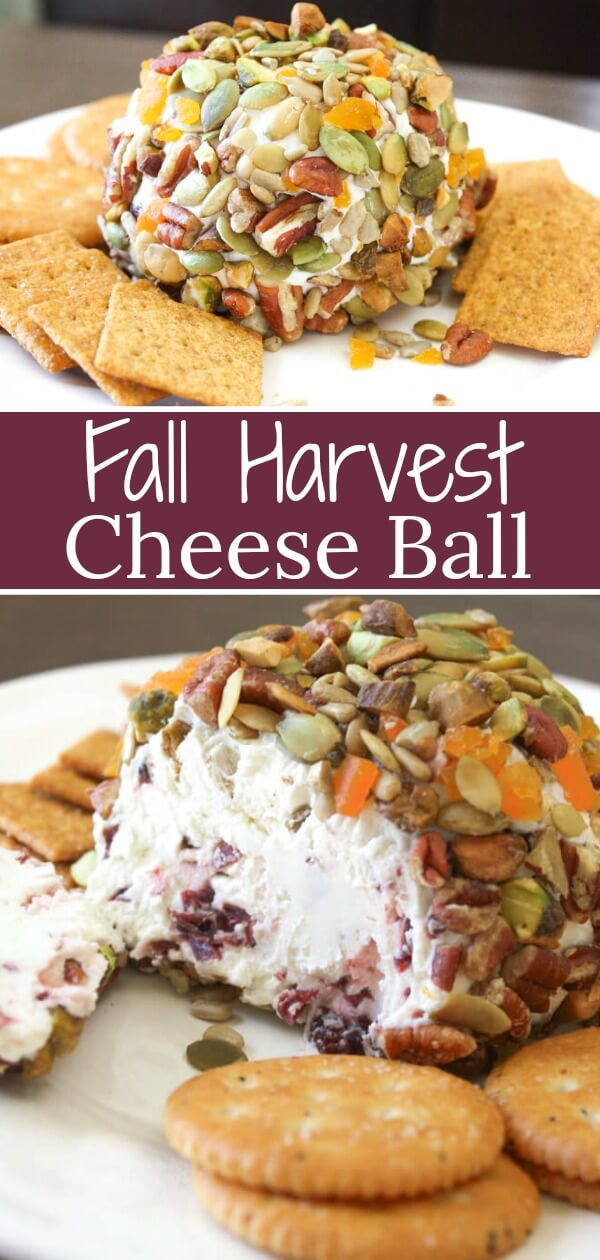 This Fall Harvest Cheese Ball recipe is jeweled with seasonal nuts and seeds. On the inside it bursts with craisins within two creamy cheeses.