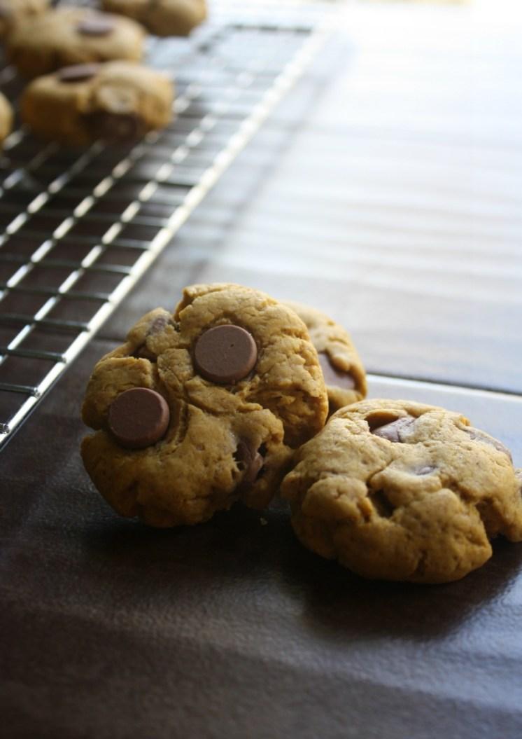 Soft Batch Chocolate Chip Pumpkin Cookies