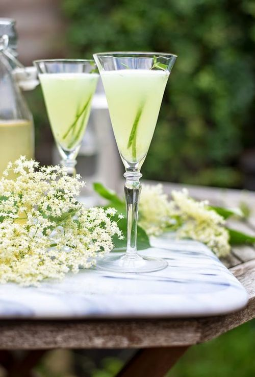 English Garden Gin Cocktail plus 40 Gin Cocktail recipes you have to make.