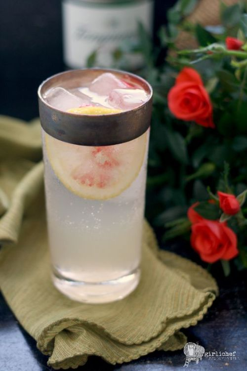 Rose Collins Gin Cocktail plus 40 more Gin Cocktails you will go crazy for!