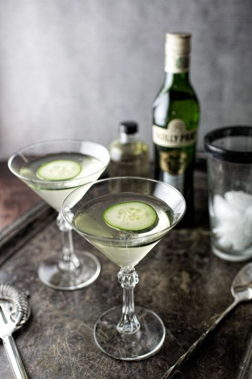 Spicy Cucumber Martini plus 40 more Gin Cocktail recipes you will love!