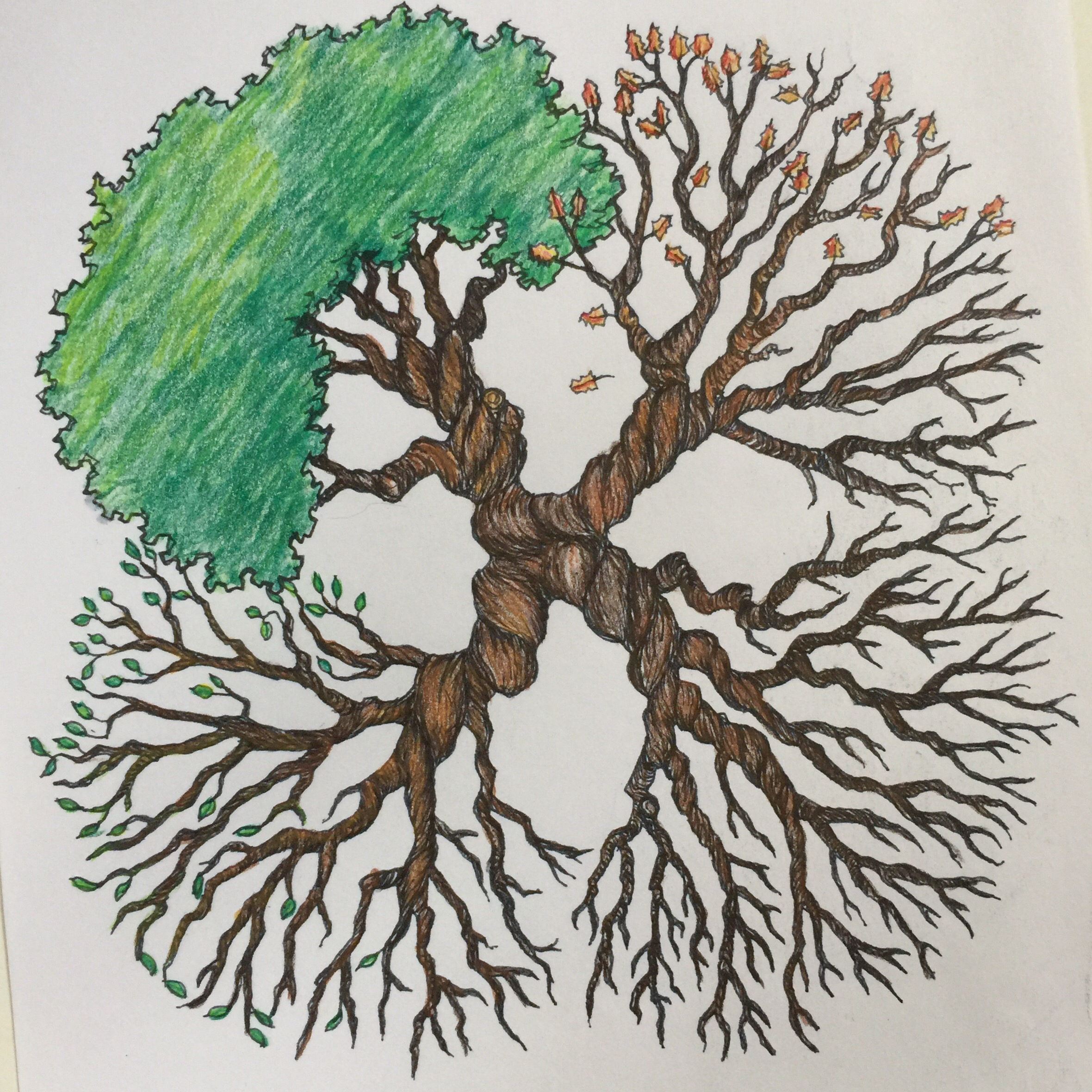 Throwback Thursday -Tree Tattoo