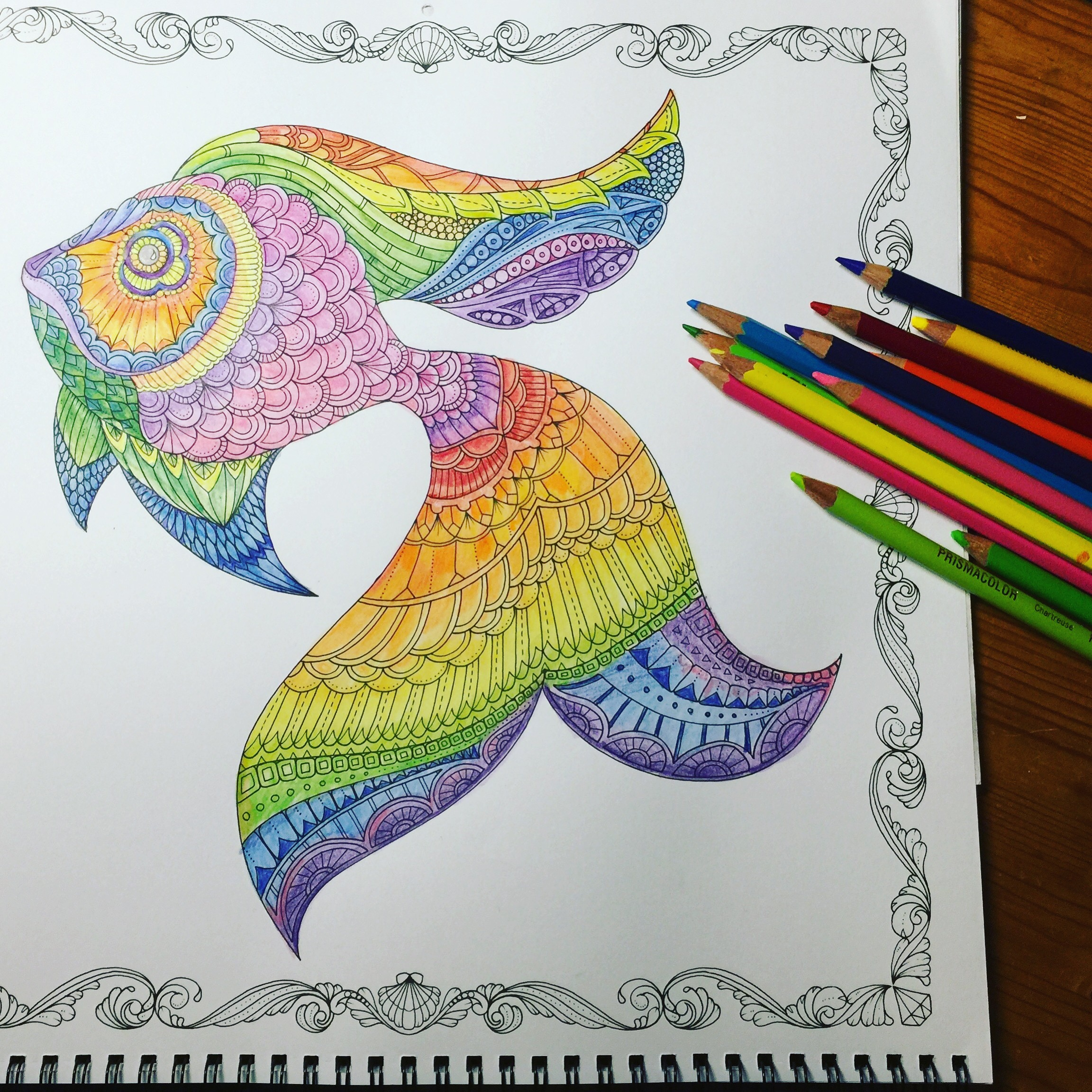 Work in Progress – Rainbow Fish