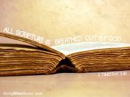 2 Timothy 3:16  I  DailyBibleMeme.com