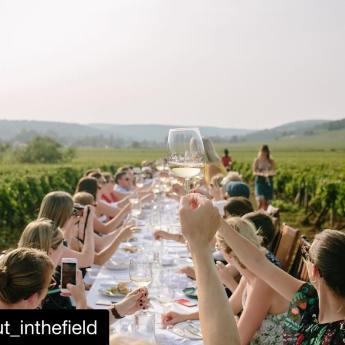 Wedding Venues Ohio - Anderson Farms 5