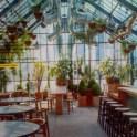 wedding venues in missouri - sunflowerhillfarm 4