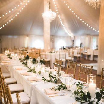 wedding venues in virginia - Historic Mankin Mansion 3